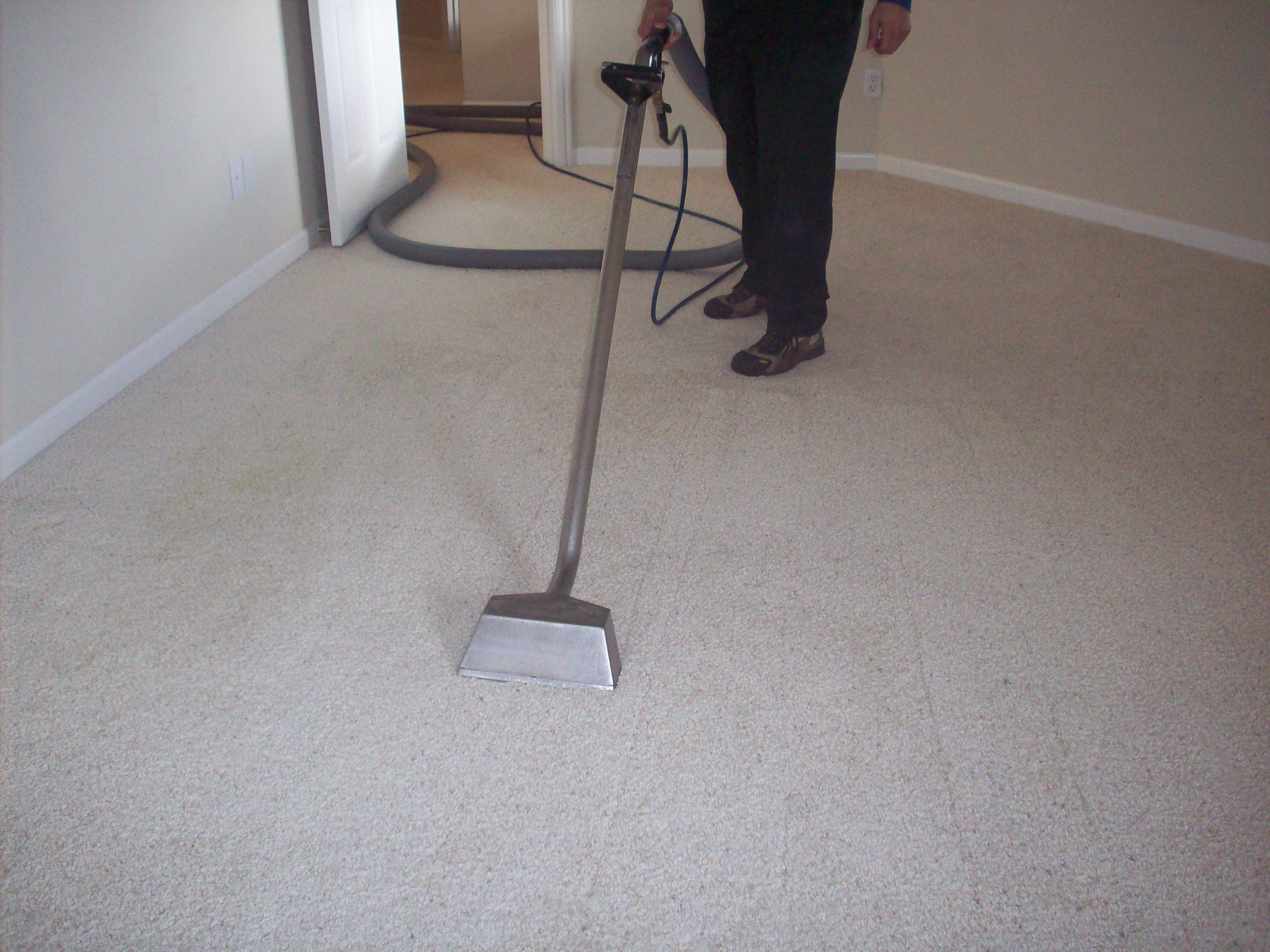 Boise Professional Carpet Cleaning Ultimate Carpet